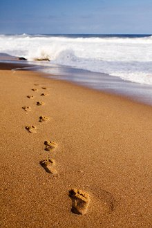 My Blog. Library Image: Footsteps in Sand